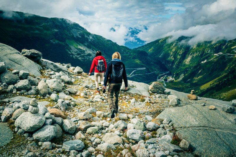 Find the Best Hiking Buddy in 1 Day: The Ultimate Guide 2017